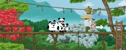 tri-pandy-pic2